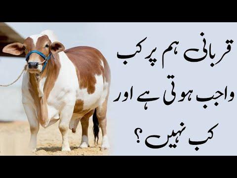 Qurbani hm per kab wajib hoti hai our kb nahi hoti.?? by 'Shaikh e Kaamil',Mufti Akmal Madani Sahib