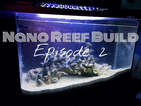 Nano Reef Build: Fishless Cycling