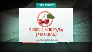 A rossz idő miatt drágulnak a gyümölcsök 19-06-02