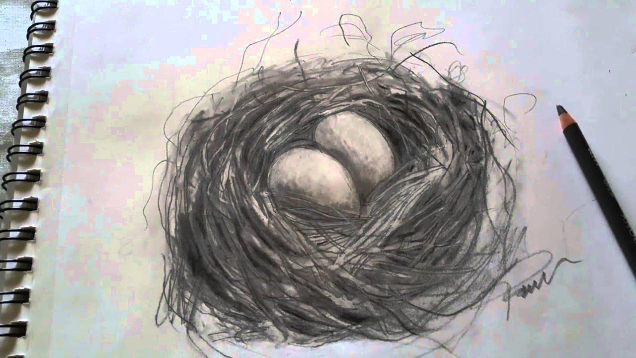 El Nido Y El águila Poesía Y Dibujo Youtube