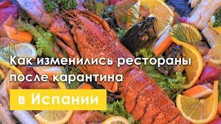 VLOG |  Как изменились рестораны после карантина? Беру интервью у русской семьи. Иду на пляж.