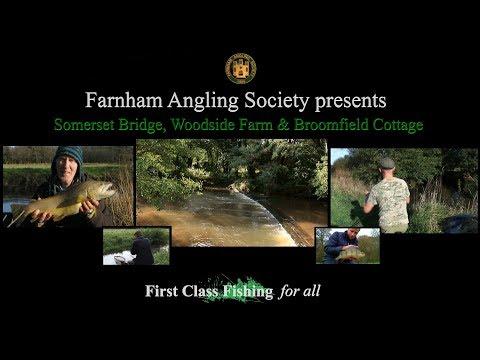 Farnham Angling Society River Wey Elstead
