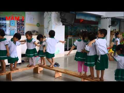 Các trò chơi vận động khối mẫu giáo Trường mầm non Hạnh Phúc