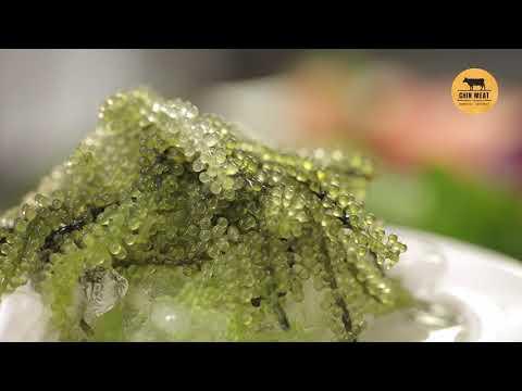 CHIN MEAT – QUẢNG CÁO CÁ HỒI ( VIDEO MARKETING )