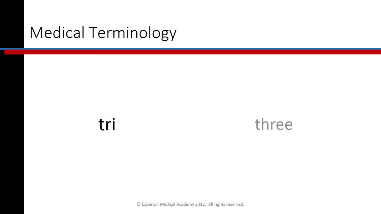 Phlebotomy Lesson 17 Medical Terminology Youtube