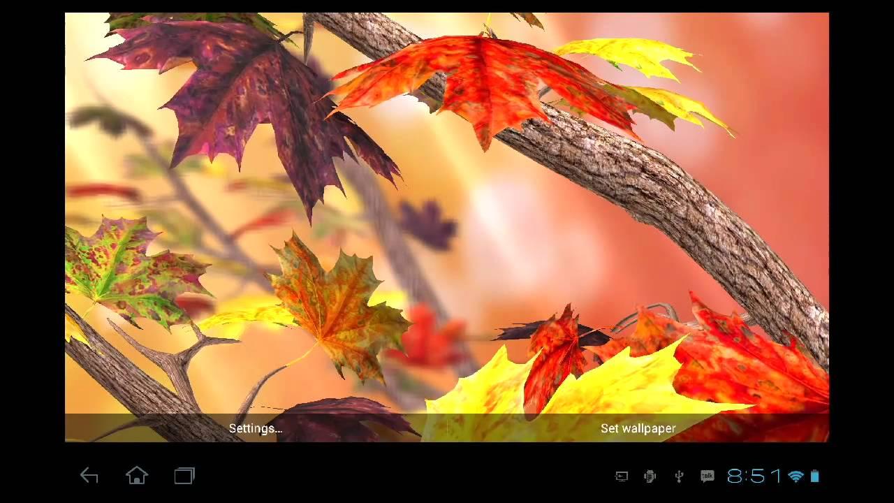 autumn tree live wallpaper - youtube