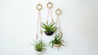 How to Make a Clay Air Plant Holder | Sunset