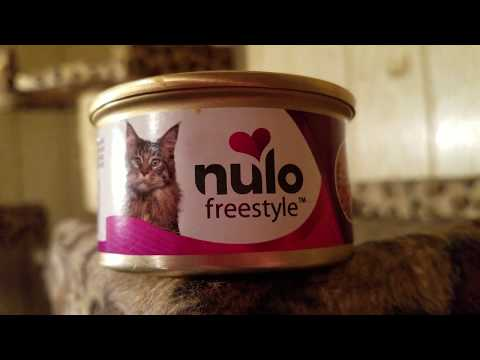 Nulo Freestyle Beef & Rainbow Trout In Gravy Canned Cat Food