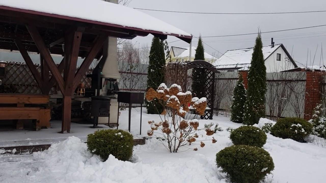Обзор сада в январе.
