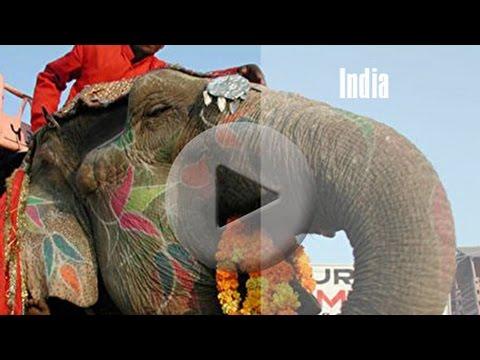 Globe Aware in India