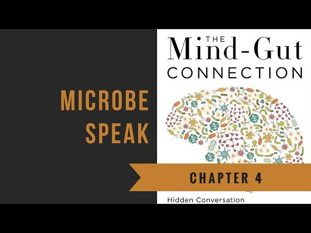 Chapter 4: Microbe Speak | The Mind-Gut Connection
