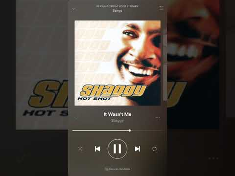 Shaggy - It Wasn't Me (HQ)