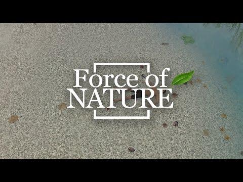 Force Of Nature || Первый взгляд || Песочница-выживалка с элементами RPG, стратегии и адвенчуры