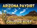 VA Gold Seeker 2lb Arizona Paydirt Review (eBay Seller)