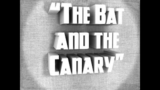 The Bat and the Canary | Stuck At Home 48 Hour Film Project 2020