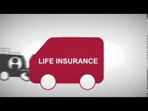 What is Life Insurance     Life Insurance 101