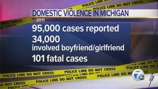 Domestic violence occurrences in Michigan