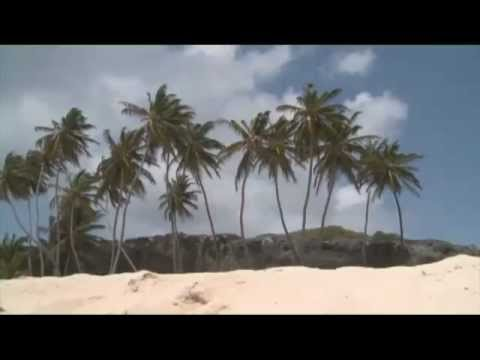 Vidéo Barbade et le Crop Over Festival - 2 - Voix Off Frédéric Blindt