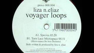 Liza N.Eliaz - Torn Lace Microspace (Micro-Espace De Soie Déchirée)