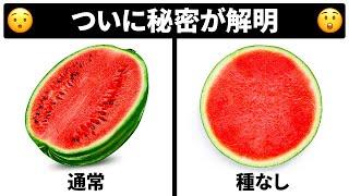 種なしフルーツはどうやって増えるの?その他の日常豆知識集