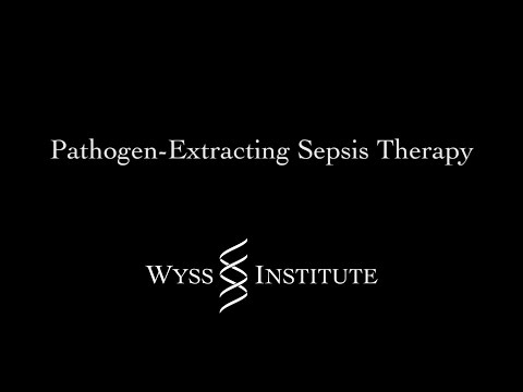 Pathogen-Extracting Sepsis Therapy
