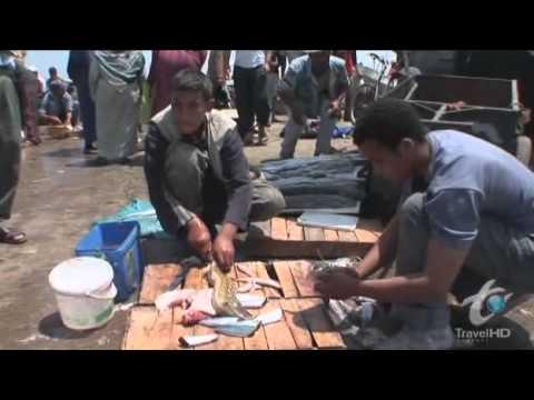 BIZARRE FOODS - MOROCCO