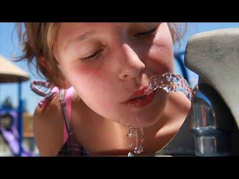 Human Water Cycle: Drinking Water