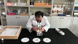 법의학과 유전자 감식 - 곤충법의학