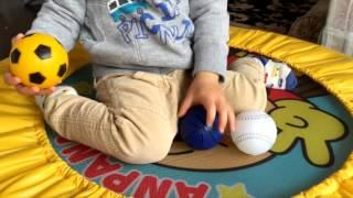 2歳 3つの物から1つを選ぶ幼児教育知育遊び英語マニュアル&プログラム...
