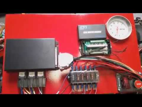 megasquirt coil wiring how to 8 coils one ignition. Black Bedroom Furniture Sets. Home Design Ideas