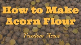 How to Make Acorn Flour (Acorn Meal)