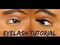 How To Apply False Eyelashes Individual Lashes Ellarie