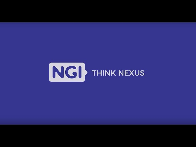 Think Nexus | Experts views on EU US collaboration on NGI topics