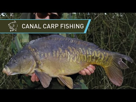 CARP FISHING TIPS NASH JACK BROWN GRAND UNION CANAL CARPING MAGMA GLUGS CLING-ON LEADER