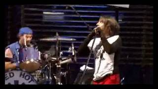 Baixar - Red Hot Chili Peppers Live At Slane Castle Full Concert Grátis