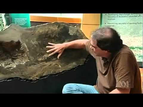 Nautilus mining explained.VOB