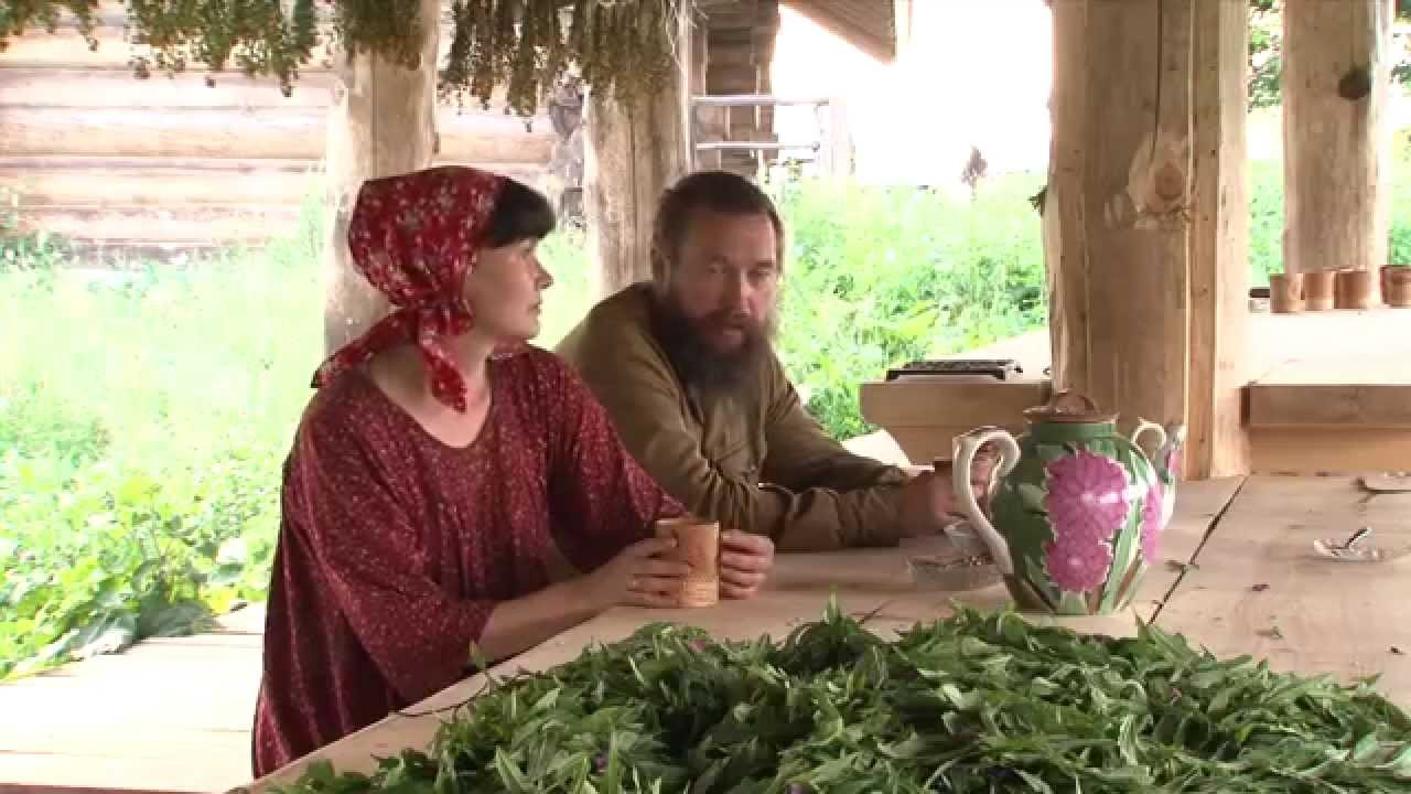 Герман Стерлигов: Иван-Чай - важно и нужно !!!