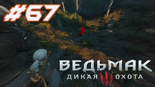 The Witcher 3 Wild Hunt -Дикая охота #67:Последняя услуга.