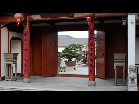 """Chinese Penjing garden """"Qingyi Yuan"""""""