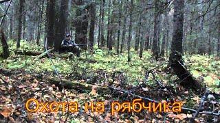 Секреты успеха охоты на рябчика с манком видео