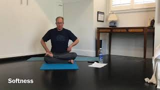 Grounding/Centering Practice ~ Hips, twists & forward folds ( 36 minutes )