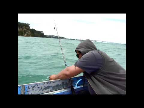 -Gone Fishing With Patu- Waitemata Harbour, Auckland, New Zealand.  Pt. 4