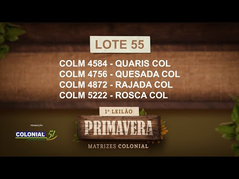 LOTE 55   COLM 4584,4756,4872,5222