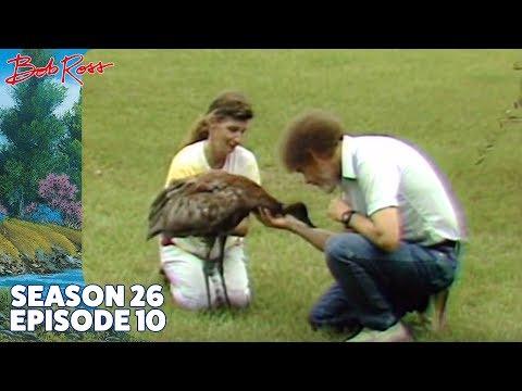 Bob Ross - Purple Mountain Range (Season 26 Episode 10)