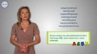 Написание частицы НЕ со словами Русский язык 2 класс