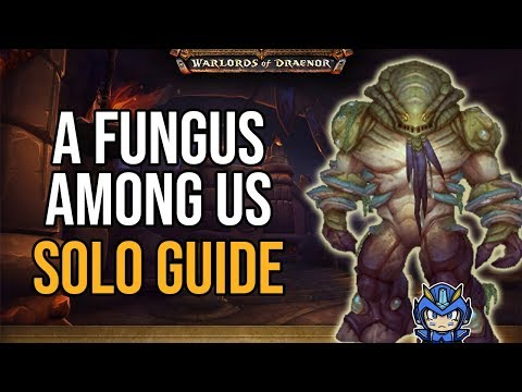 World of Warcraft Achievement: A Fungus Among Us (Solo)