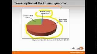 Long non-coding RNAs in Development & Disease Progression