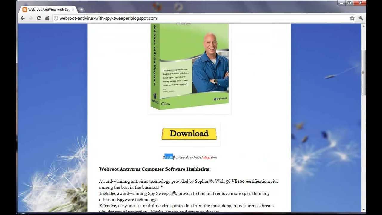 Webroot SecureAnywhere AntiVirus 9 0 17 28 + Keys