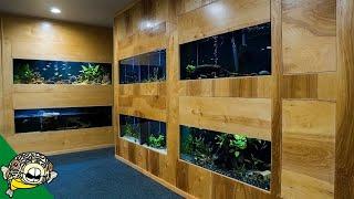 The Crazy 1 Month Update on the Fish Room/Studio with Aquapros, Flip Aquatics, Steenfott Aquatics