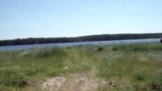 Завьялово озеро Соленое(, 2013-07-01T07:05:32.000Z)